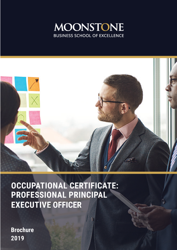 The Professional Principal Executive Officer Qualification